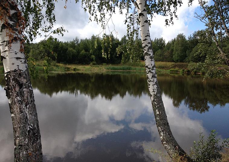 Ильинский пруды